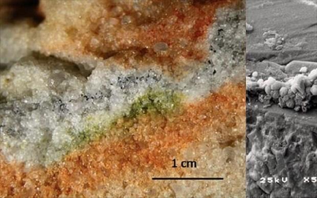 peirama-ston-diastimiko-stathmo-deixnei-pos-o-aris-den-einai-afiloksenos-sti-mikrobiaki-zoi